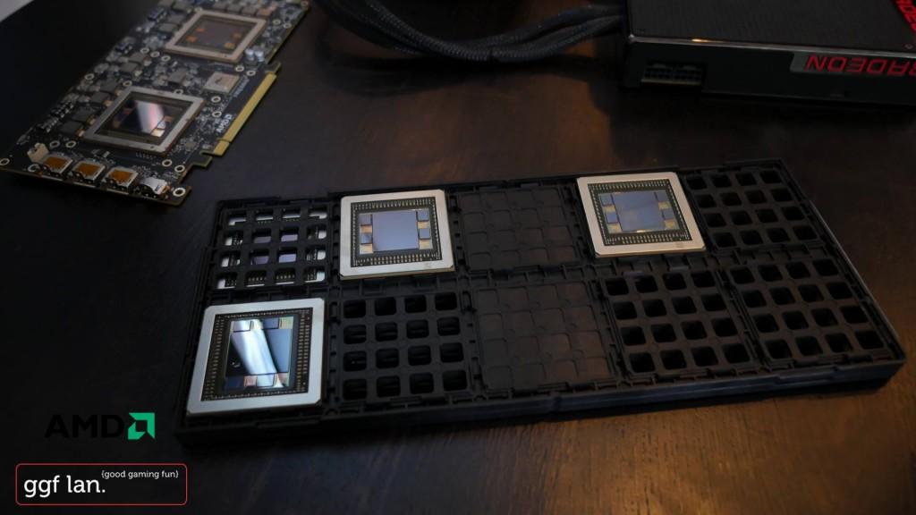 AMD1 (6)